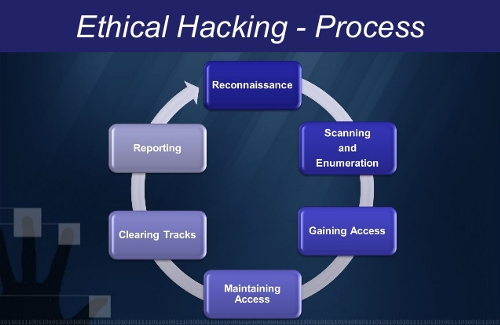 Ethical Hacking/Penetration Testing Image